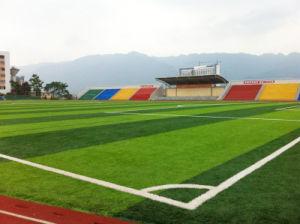 Football Turf (A650118ZD13001)