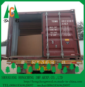 Factory Directly Supplies Raw MDF Sheet pictures & photos