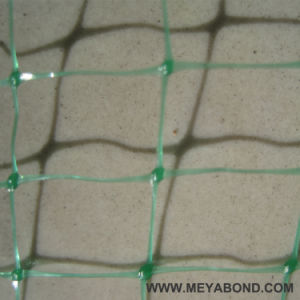 Anti Bird Netting Protects Crops From Bird Damage pictures & photos