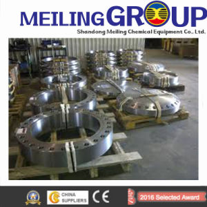 Vendor Stainless Steel Flange for Tube Sheet Connection Flange pictures & photos