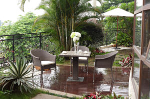 New Design Outdoor Rattan Dining Set / Garden Furniture (BZ-D084)