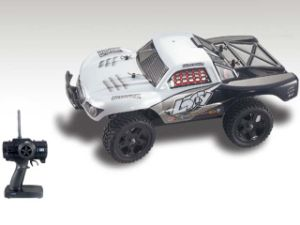 RC Rally Car Scale 1: 16 pictures & photos