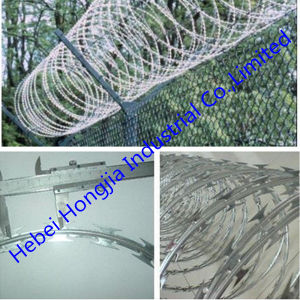 Hot Dipped Galvanized and Electric Galvanized Razor Barbed Wire (CBT-65)