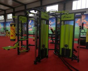 Top Quality Synrgy360 Fitness Equipment (S-3001) pictures & photos