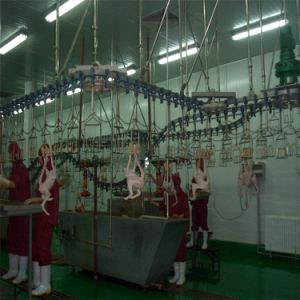 Slaughter House Broiler pictures & photos