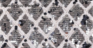 Black and White Sequins Mesh Embroidery Fabric for Dressing pictures & photos