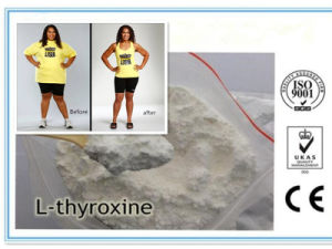 Natual Fat Burners T4/Raw Steroids Powder Levothyroxine Sodium L - Thyroxine pictures & photos