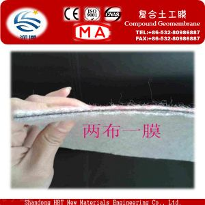 Factory Supply Compound Geomembrane Fabric on Sale pictures & photos