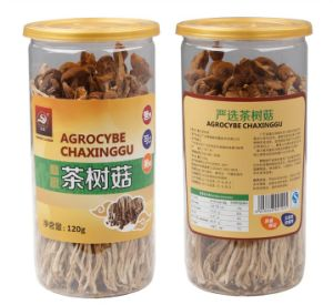 Edible Fungus Yuewei Agrocybe Chaxinggu