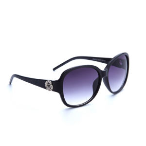 Classic New Coming Women Plastic Sunglasses with Ce Approved (KD9529)
