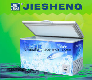 -60 Degrees Ultra Low Temperature Freezer Dw-60W308 pictures & photos