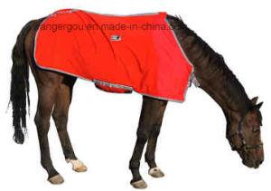 400g Poly Fleece Horse Rug (RG-N08) pictures & photos