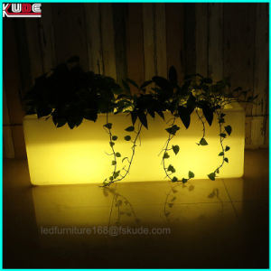 Hotel Restaurant Lobby Hall Outside Inside Flower Pots with Lighting pictures & photos
