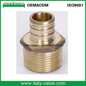 Brass Pex Male Adapter/Couping (PEX-007) pictures & photos