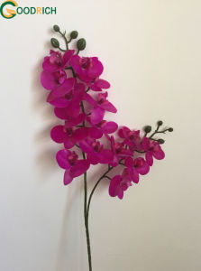 Single Stem Mini Real Touch Orchid Flower pictures & photos