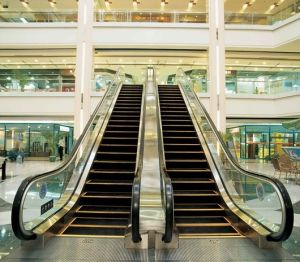 Escalator for Shopping Mall (GRE30) pictures & photos