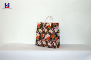 2017 Popular Shopping Bag Non-Woven Bag pictures & photos