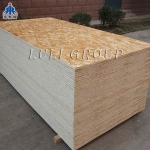 1220X2440mm OSB Board for Construction Usage pictures & photos