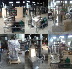 Groundnut Sesame Pumpkin Camellia Moringa Walnut Oil Making Machine pictures & photos