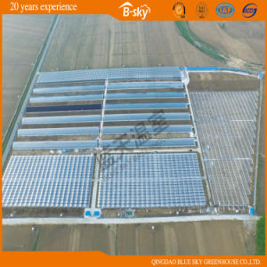 High Cost Performance Multi-Span Film Greenhouse pictures & photos