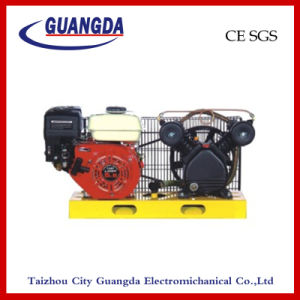 CE SGS 5.5HP Panel Air Compressor (DCV2051) pictures & photos