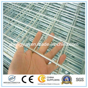 Construction Galvanized Welded Wire Fence Mesh Panel pictures & photos