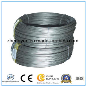 Hot! Factory Price! Galvanized Steel Coil/Binding Wire pictures & photos