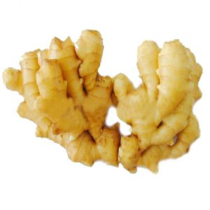 Chinese Fresh New Ginger with 250&up pictures & photos
