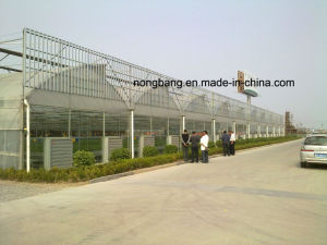 China Single Double Film Greenhouse with ISO pictures & photos