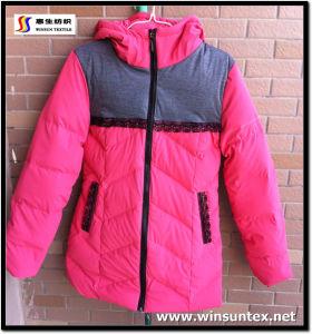 Imitation Leather Downproof Fabric (HKTJ004-3DRT1)