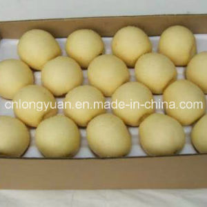Export Standard Chinese New Crop Crown Pear pictures & photos