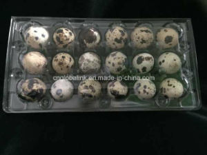 Blister Plastic Quail Egg Tray Container 30 Holes pictures & photos