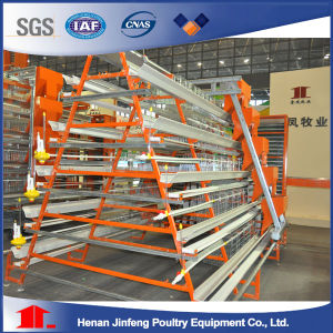 Poultry Cage for Layers in Latinoamerica pictures & photos
