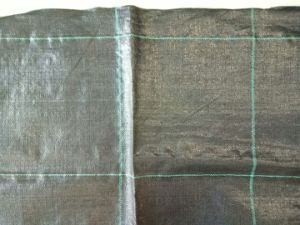 Ground Cover Fabric/ Woven Geotextile with High Strength pictures & photos