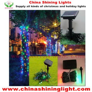 Outdoor Decoration Solar Panel Power Multi Color LEDs Holiday Lights pictures & photos