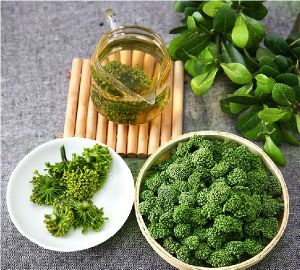 Chinese Farmer Supply Wenshan Sanchi Sanqi Wild Organic Notoginseng Flower Tea 4 Years Growth pictures & photos