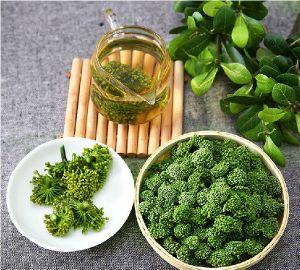 Chinese Farmer Supply Wenshan Sanchi Sanqi Wild Organic Notoginseng Flower Tea 4 Years Growth pictures & photos