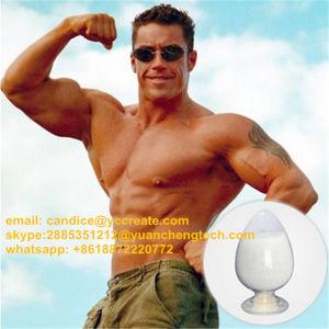 99 Purity Dihydroboldenone/Dhb Prohormone Steroid Powder CAS: 65-06-5 pictures & photos