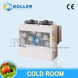 20cbm Cold Room for Storing Block Ice/Tube Ice/Flack Ice/Cube Ice pictures & photos