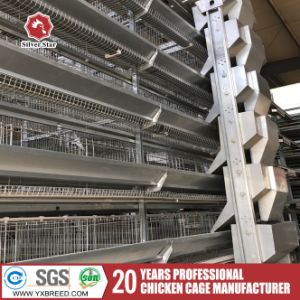 H Type 4-Tier Laying Hen Battery Cages for Chicken Farming pictures & photos