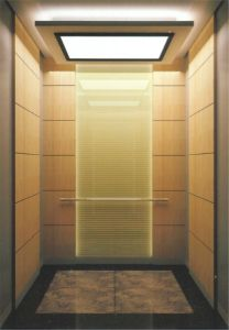 Fujizy Villas Elevator of Technology From Japan with Ce pictures & photos