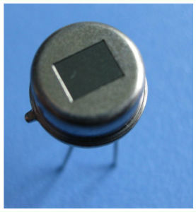 Pyroelectric Infrared Radial Sensor Kp500b From Nicera Orignal PIR Detector Sensor pictures & photos