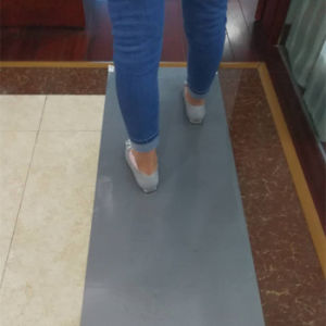 Room Cleaning Anti-Slip Sticky Mat pictures & photos