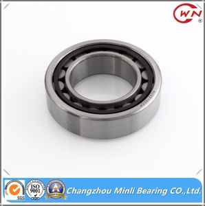 China Good Quality Cylindrical Needle Roller Bearing N Nu Nj pictures & photos