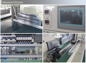 Automatic Floor Board Shrink Wrapping Machine pictures & photos