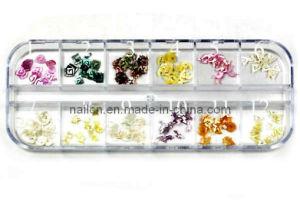 Nail Beauty, Nail Ornament, Nail Art Shell Pattern (RNAS-026) pictures & photos