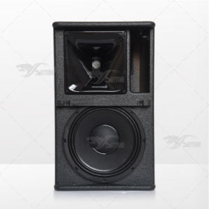 Skytone Arcs10 1X 10 Inch Stage Monitor Speaker Box pictures & photos