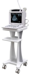 Medical Ultrasound Machine for Sale pictures & photos