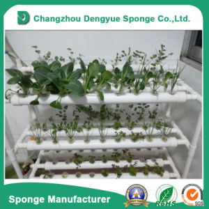 Eco-Friendly Breathable Greenhouse Foam Hydrophilic Foam pictures & photos