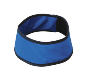 Protection Lead Collar Ce pictures & photos